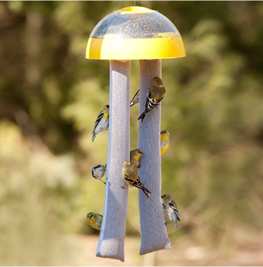 birds eating on double sock feeder