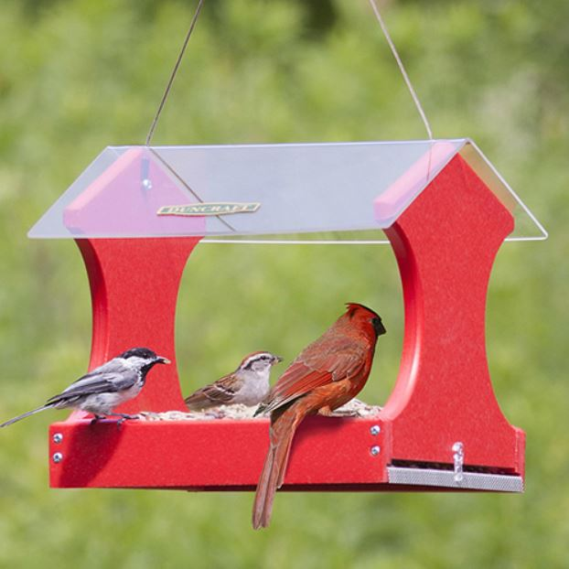 Red platform feeder with cardinal and 2 other birds enjoying a snack