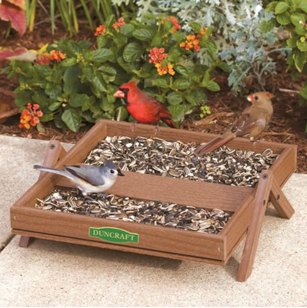 Ground platform feeder set on the patio with 3 birds eating birdseed from it