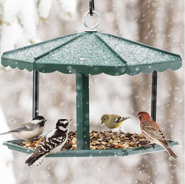 open green bird feeder in the snow
