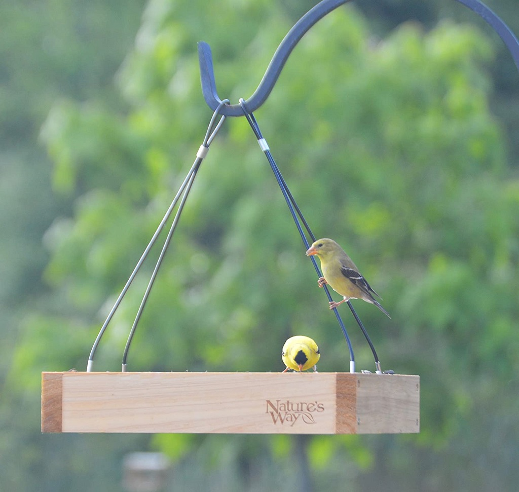 Wooden bird feeder with 2 yellow finches