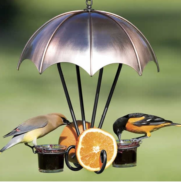 Oriole Feeder with a umbrella shaped copper top