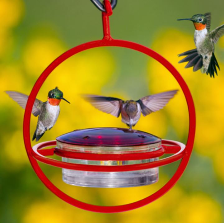 Three hummingbirds feeding from the Duncraft Sphere Shaped Feeder