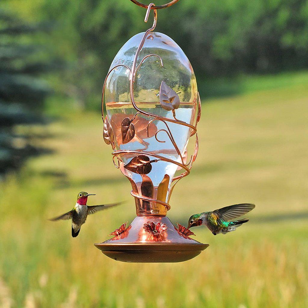 Glass and Copper Bird Feeder for Hummingbirds