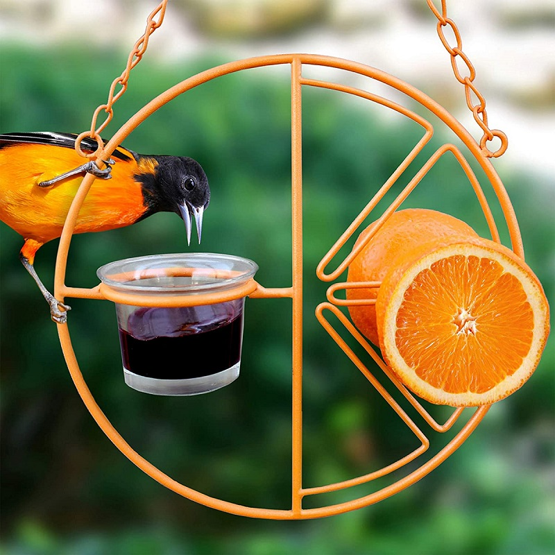 Jelly and Clementine Feeder by Heath