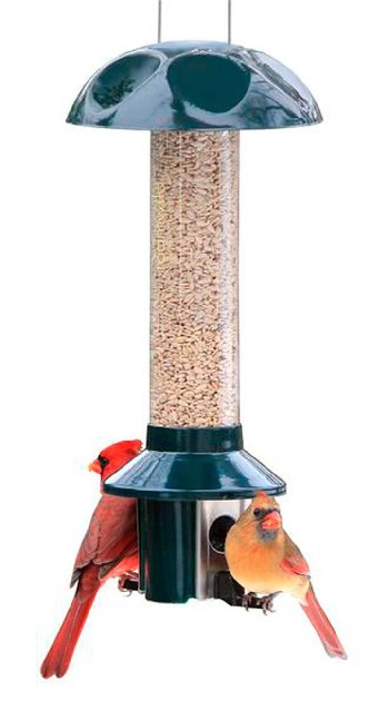 Tube Style Feeder with Squirrel proof perches